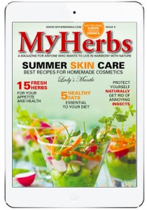 My Herbs Sample Issue